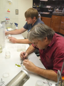 Darren and Jeremy working in lab